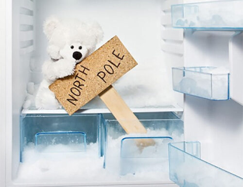 Sbrino il freezer e sogno le imprese di Roald Amundsen