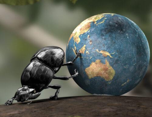 El sbovo: un armistizio con gli scarafaggi?
