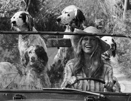 Orsi: Brigitte Bardot visiterà il contestato recinto del Casteller