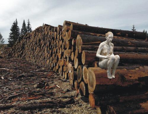 """""""Mutamenti"""": voci da una foresta spezzata"""
