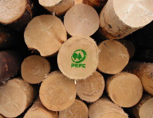 Arrivano a 900mila ettari le foreste eco-certificate: primo il Trentino