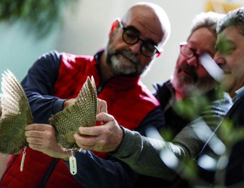 Confermato nel 2022 a Riva del Garda l'Expo del Cacciatore