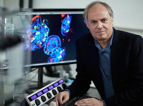 Ricerca contro il cancro: il premio Pezcoller-AACR 2021 ad Hans Clevers