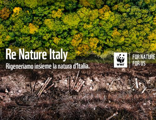 ReNature: scendiamo in campo con il WWF per salvare la natura
