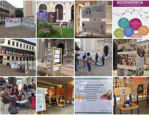 """""""Re-play³… una piazza che cresce"""": ricco programma della Fondazione Demarchi"""