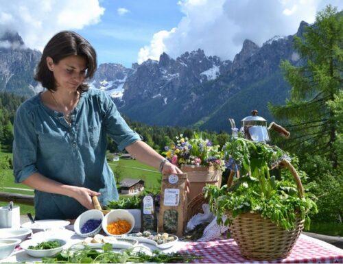 Andar per Erbe: cercare, scoprire e gustare erbe e fiori dei nostri prati!