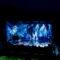 Alice Merton e Opus sul palcoscenico al Lago di Caldaro