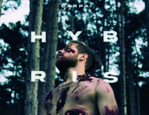 Carpa > Hybris